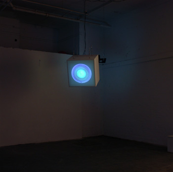 'iridescent self' installation photo form 'You are not in Control'